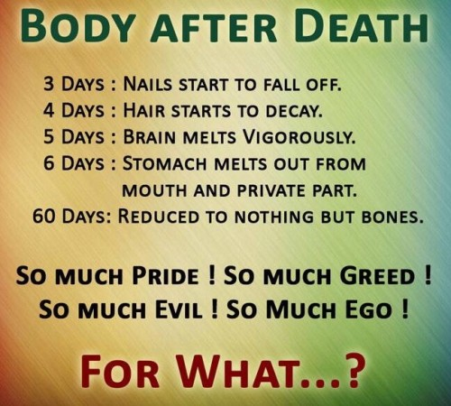 body after death
