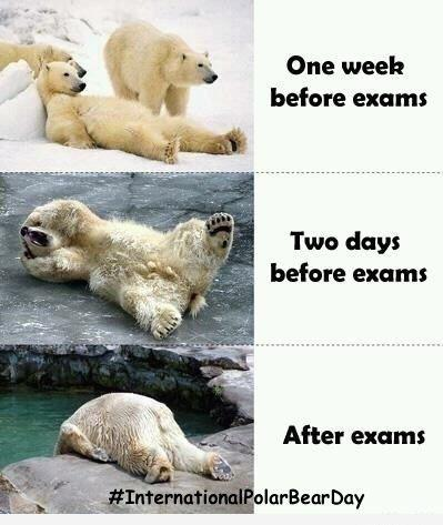 students before and after exam