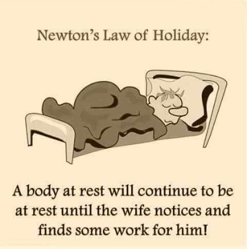 newtons law of holiday