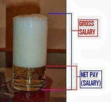 identify your Gross and Net salary